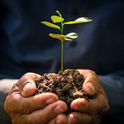Umwelthaftpflicht und Umweltschaden